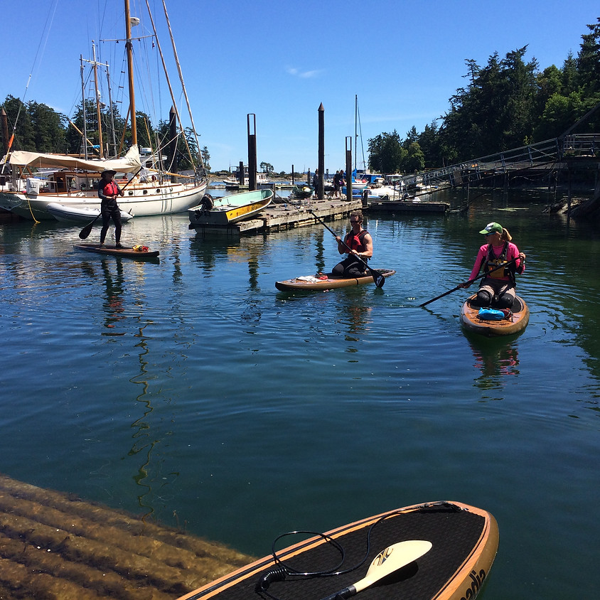Introductory SUP (For groups of 3 or more)