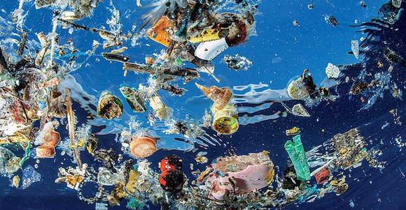plastic-contamination.jpg