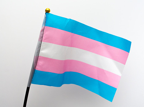 Trans Politicians and Government Officials Making History