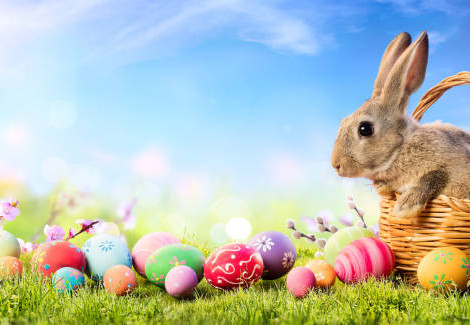 Lessons to Take from 'Zoom Easter'