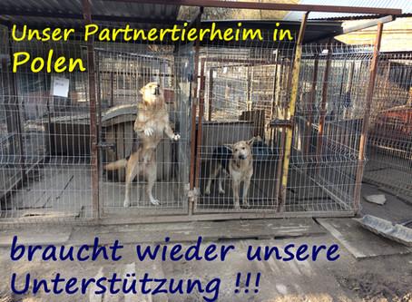 Spendenaufruf für das Partnertierheim in Polen