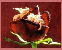 rosesleepers.jpg