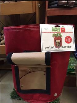 Potato Planter