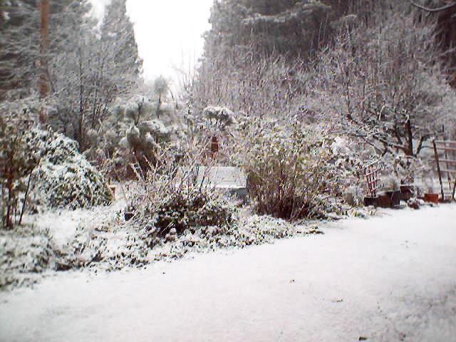 Winter Knoll Garden