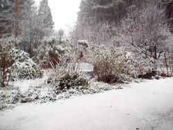 Winter Knoll Garden