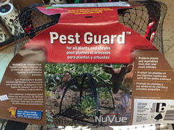 Pest Guard