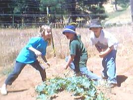 Weeding help