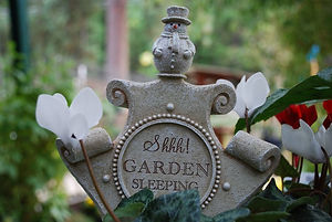 gardenPlace.jpg