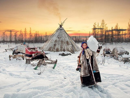 Les Nenets, la Toundra et moi