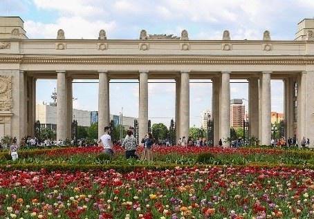 Le Parc Gorki, un Incontournable