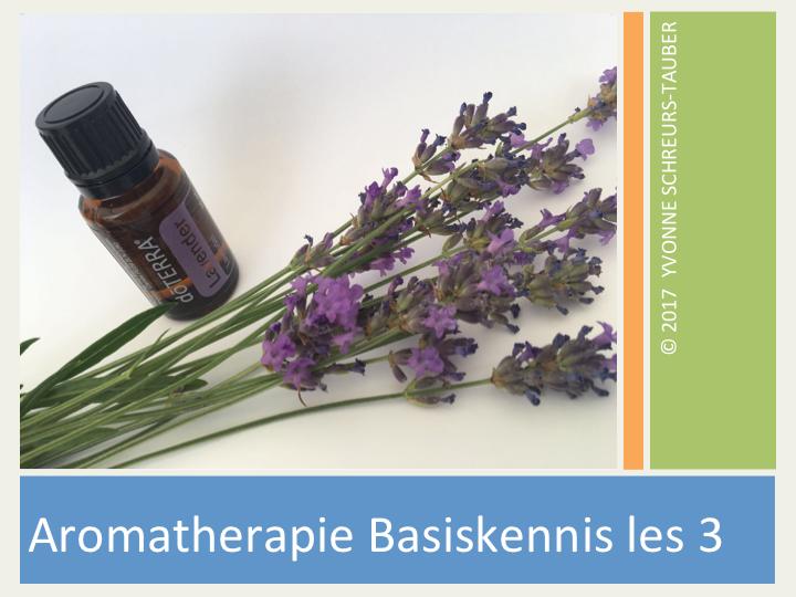 boekje in beeld over aromatherapie met een flesje lavendelolie