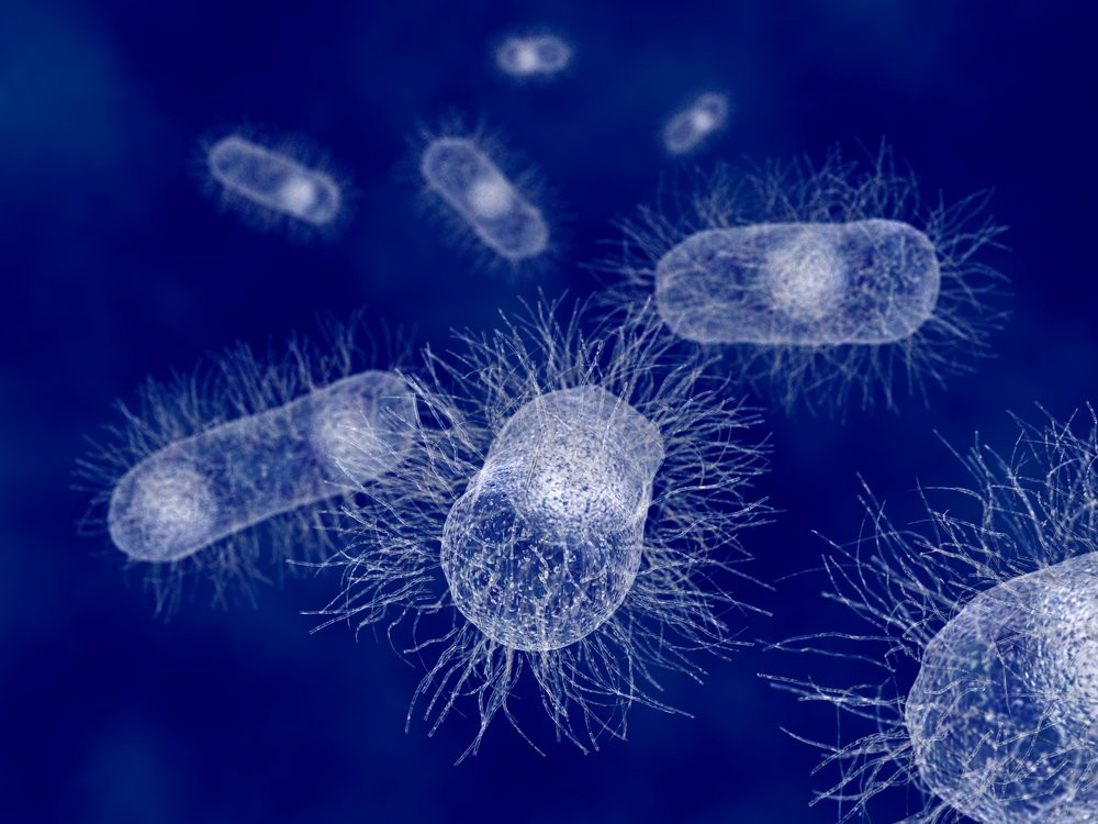 micro-organismen op een blauwe achtergrond