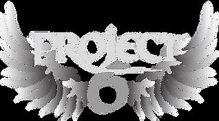 Projekt6-Logo-ohne Hintergrund Kopie.png