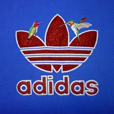 Adidas / Hummingbirds