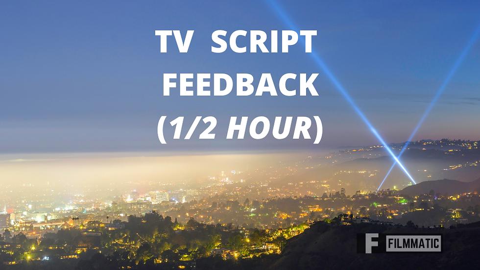 TV SCRIPT FEEDBACK  (1/2 Hour)
