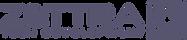 Logotipo Oficial - Zettra - Sin fondo.pn