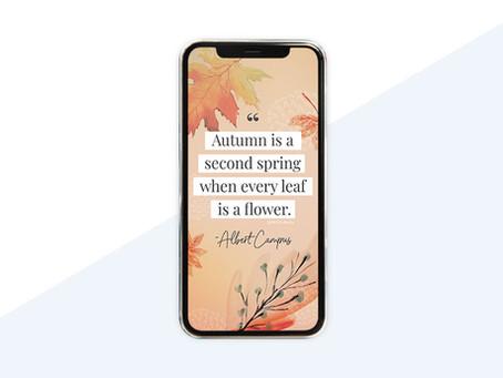 Free Phone Wallpaper For November 2020