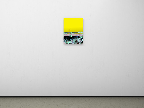 Raphael Brunk I #b5b739 I 2020 I 60 x 45 cm I UV-Print on Alucore