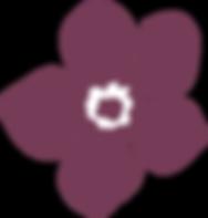 elementi-bacche-1_edited.png