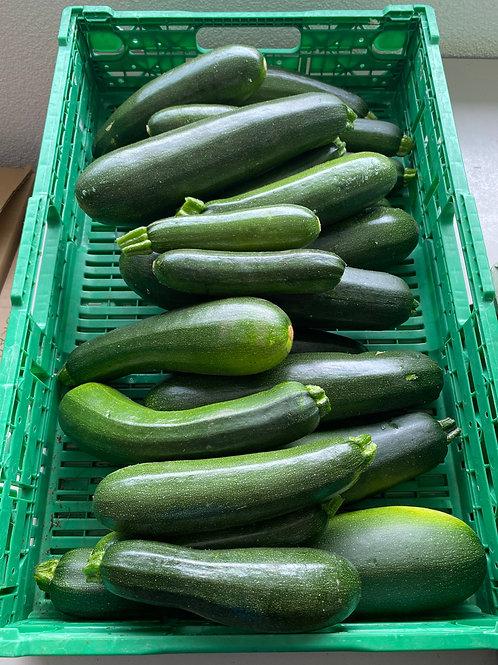 Zucchine di 2°