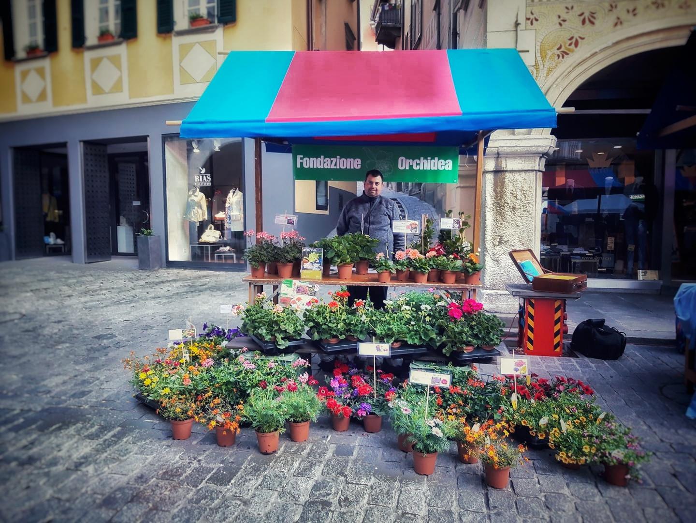 Mercato di Bellinzona