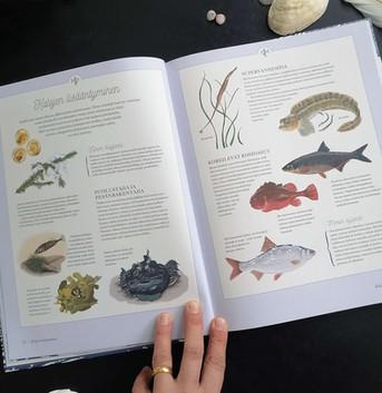 Nuuskamuikkusen kalakirja