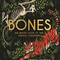 bones3.jpg