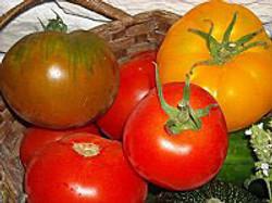 tomates_