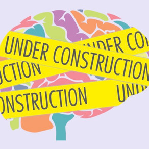 The Teenage Brain: A Masterpiece Under Construction