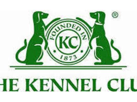 KENNEL CLUB PRESS RELEASE