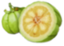 garnicia-cambodgia-featured_edited.png