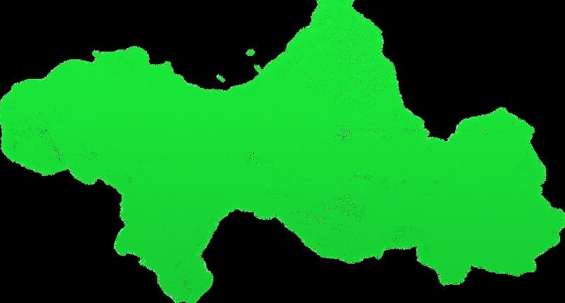 зеленый дымок форза 2021.png