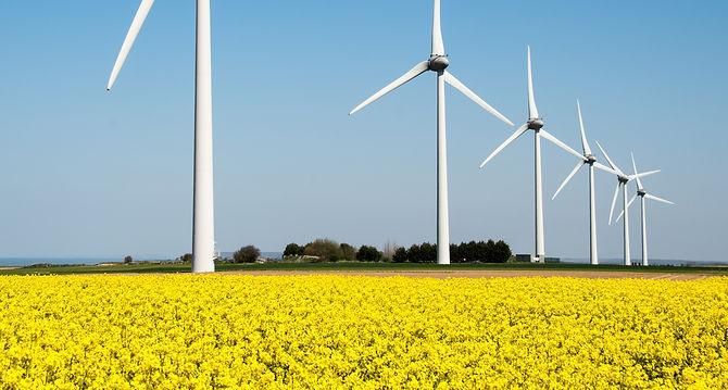Wind%20turbine%20in%20a%20yellow%20flowe