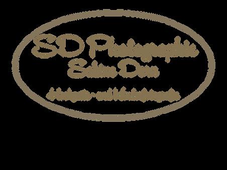 Logo SD neu o. H.png