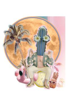 Cactus Man Woman