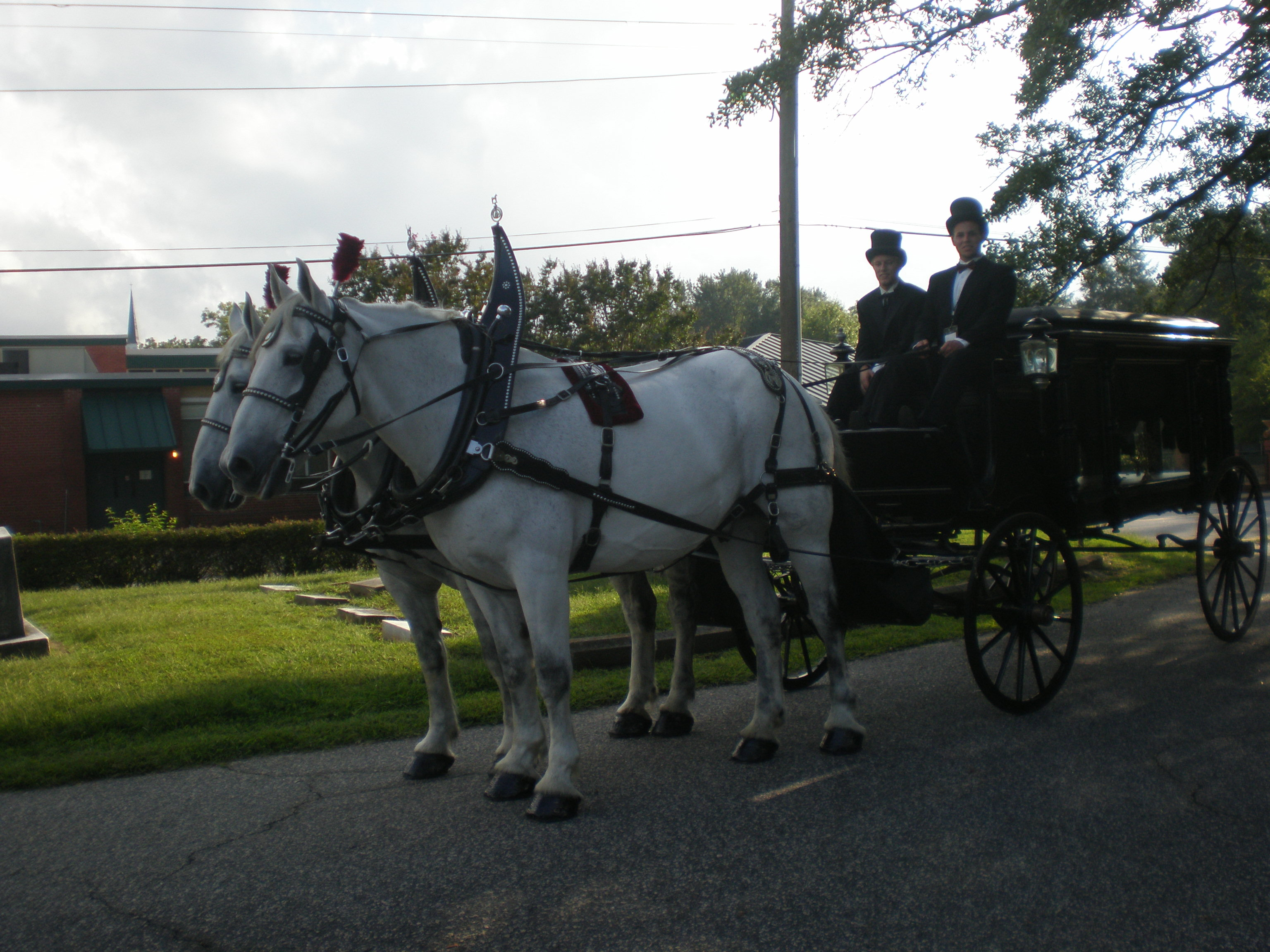 Family+and+carriage+pics-0424