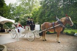 duke-carriage