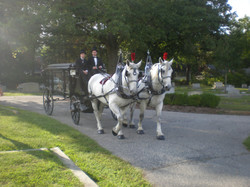 Family+and+carriage+pics-0427