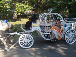 carriage6