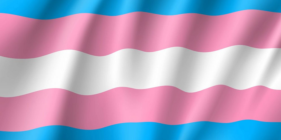 Transgender 201
