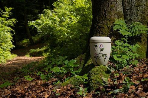 Urnenbeisetzung im RuheForst Klosterhof Grabhorn, Bestattungshaus Tapken & Söhne Wiefelstede