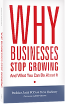 Why Businesses Stop Growing book