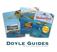 Doyle guides logo
