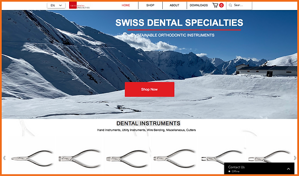 Desktop view of a sample site in Switzerland constructed by 16 Reasons - Swiss Dental Specialties firm