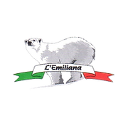 Find italian products for import