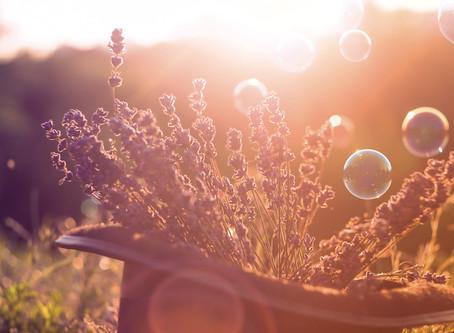 Organiniai aliejai - gerina miegą ir mažina nerimą, ar tai tik malonūs kvapai be poveikio?