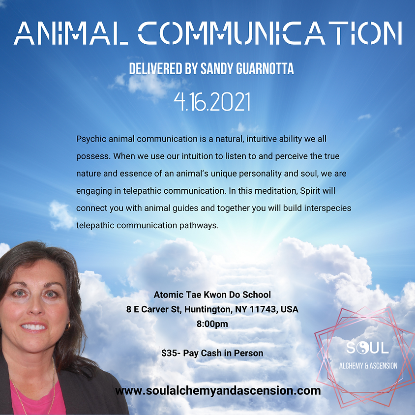 ANIMAL COMMUNICATION MEDITATION