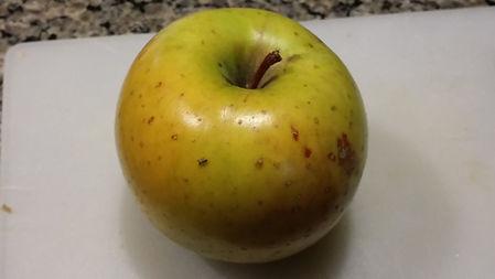 organic, apple, ipm, goldrush, disease-resistant, variety, cultivar, scab, CAR, fire blight, cedar apple rust