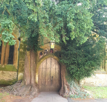 The door way to Narnia in the Cotswolds