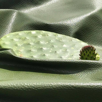 "Vegan Cactus Leather, A Cruelty-free, Sustainable Alternative That Had The Fashion Industry at ""Hell"